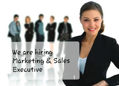 Wanted Sales Executive